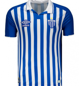 Avaí FC Soccer Jersey for Men, Women, or Youth (Any Name and Number) Refuse You Lose color: Away|Home