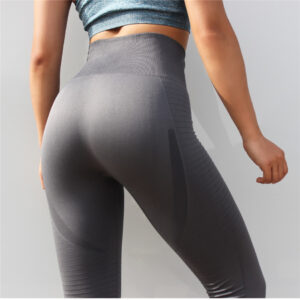 High Waisted Mesh Sports Women's Leggings Refuse You Lose color: Black|Blue|Red|Gray