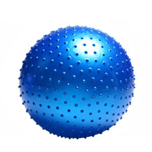 Large Pilates Balance Ball Refuse You Lose color: Blue|Red|Gray|Pink|Purple